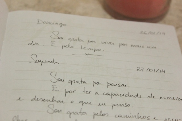 diario de gratidao 5