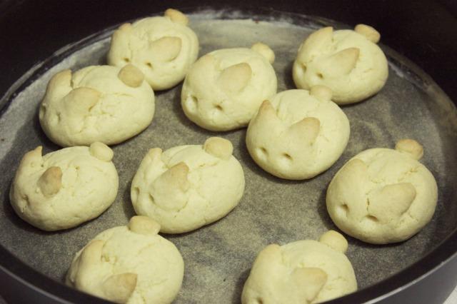 biscoitinho coelhinho 11