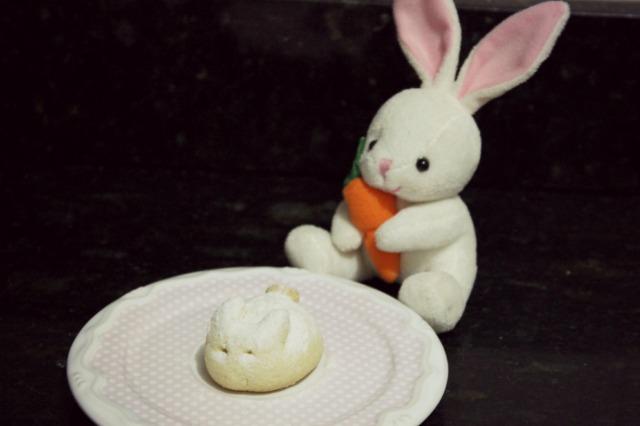 biscoitinho coelhinho 13